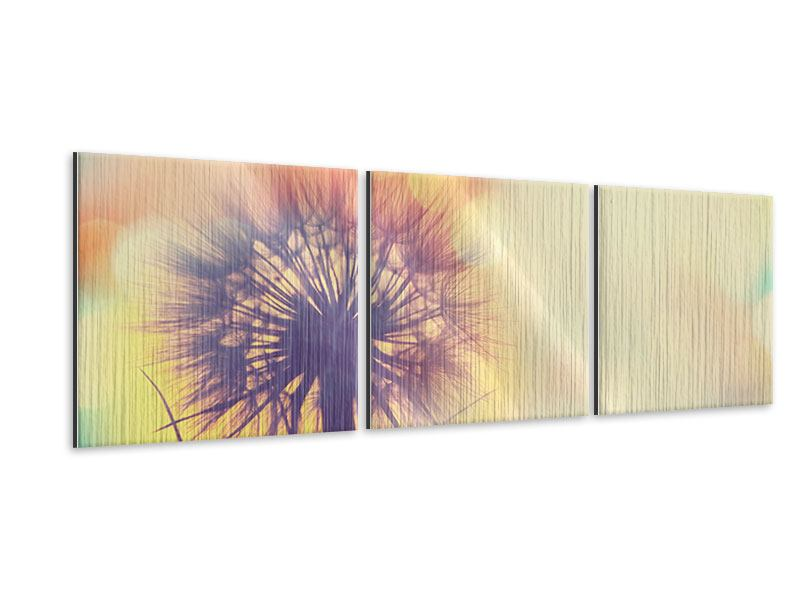 Panorama Metallic-Bild 3-teilig Die Pusteblume im Licht