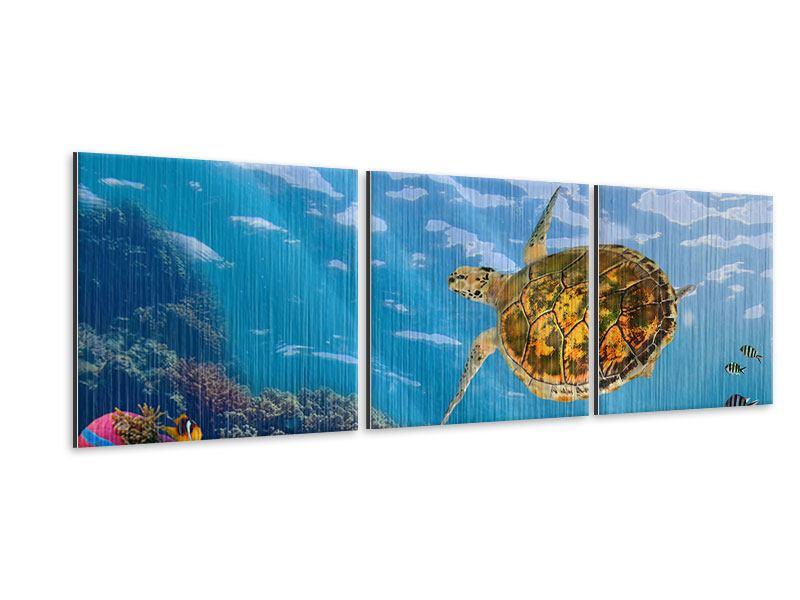 Panorama Metallic-Bild 3-teilig Die Wasserschildkröte