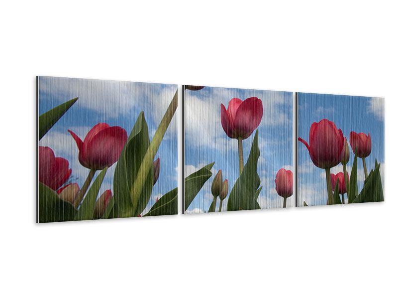 Panorama Metallic-Bild 3-teilig Tulpen im Himmel