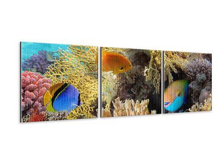 Panorama Metallic-Bild 3-teilig Fischreichtum