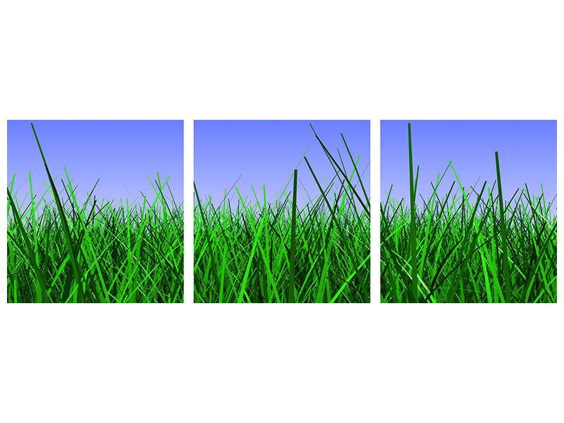 Panorama Metallic-Bild 3-teilig Im Gras