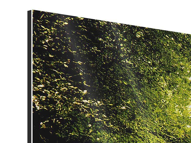 Panorama Metallic-Bild 3-teilig Der bemooste Weg