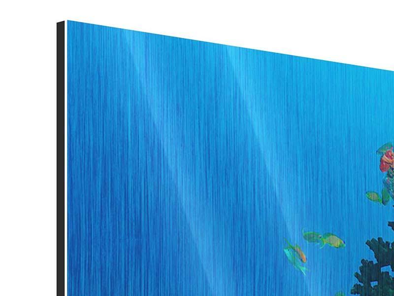 Panorama Metallic-Bild 3-teilig Die Welt der Fische