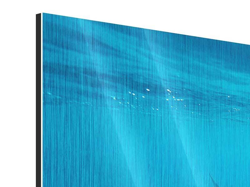 Panorama Metallic-Bild 3-teilig Der Walhai