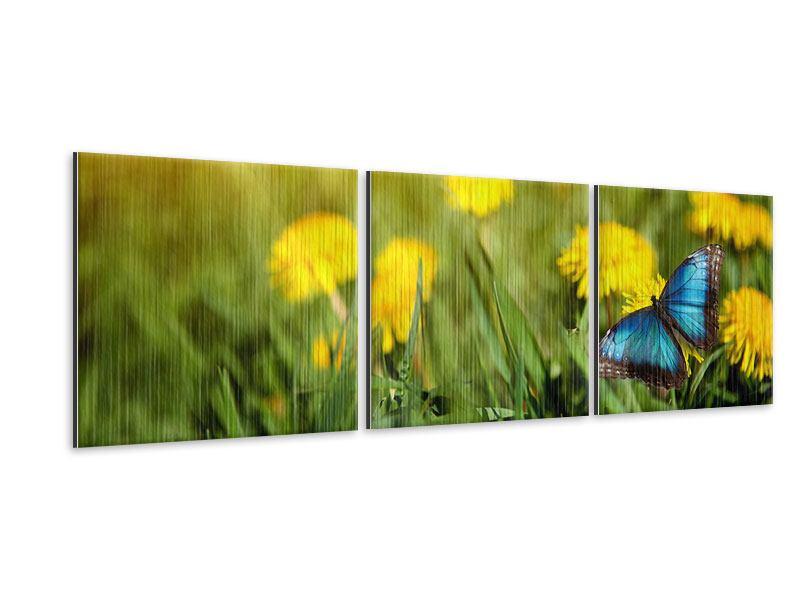 Panorama Metallic-Bild 3-teilig Der Löwenzahn und der Schmetterling