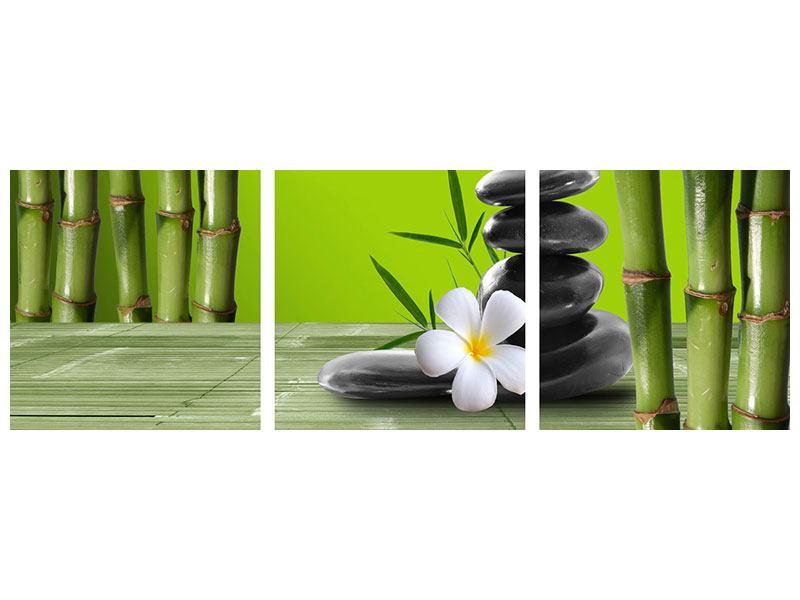 Panorama Metallic-Bild 3-teilig Der Bambus