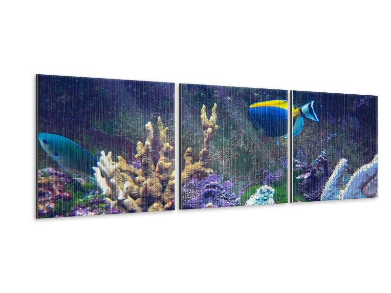 Panorama Metallic-Bild 3-teilig Fische