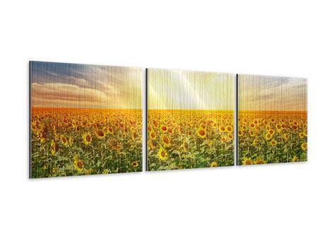 Panorama Metallic-Bild 3-teilig Ein Feld voller Sonnenblumen