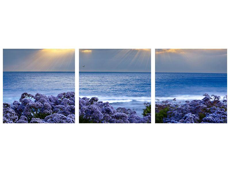 Panorama Metallic-Bild 3-teilig Der Lavendel und das Meer