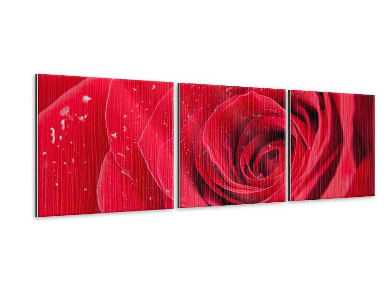 Panorama Metallic-Bild 3-teilig Rote Rose im Morgentau