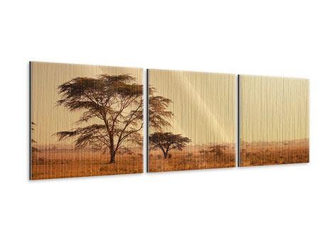 Panorama Metallic-Bild 3-teilig Weideland in Kenia