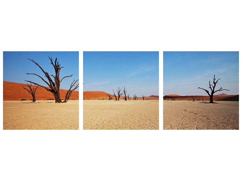 Panorama Metallic-Bild 3-teilig Wüste