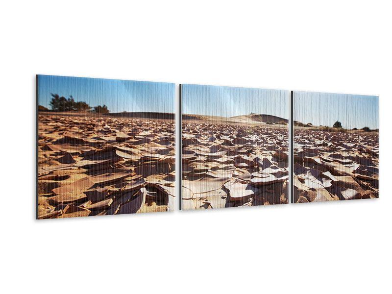 Panorama Metallic-Bild 3-teilig Dürre
