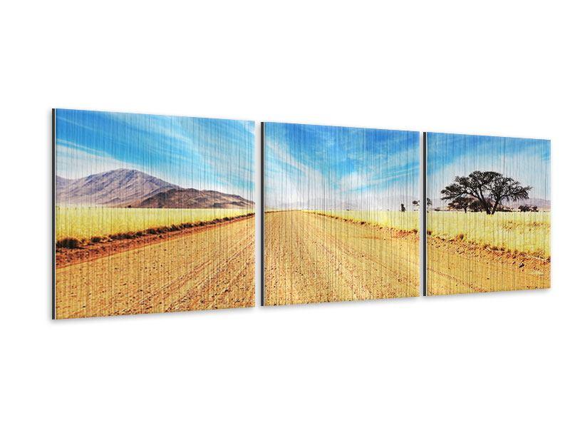 Panorama Metallic-Bild 3-teilig Eine Landschaft in Afrika