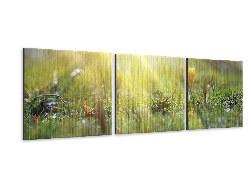 Panorama Metallic-Bild 3-teilig Blumige Wiese