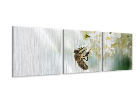 Panorama Metallic-Bild 3-teilig Die Hummel und die Blüte