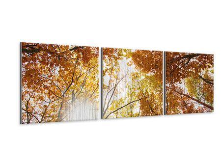 Panorama Metallic-Bild 3-teilig Herbstbäume