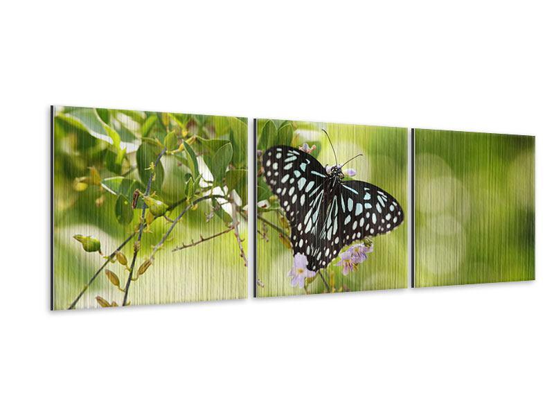 Panorama Metallic-Bild 3-teilig Papilio Schmetterling XXL