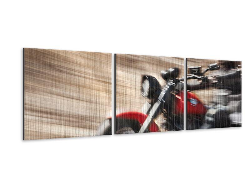 Panorama Metallic-Bild 3-teilig Biker