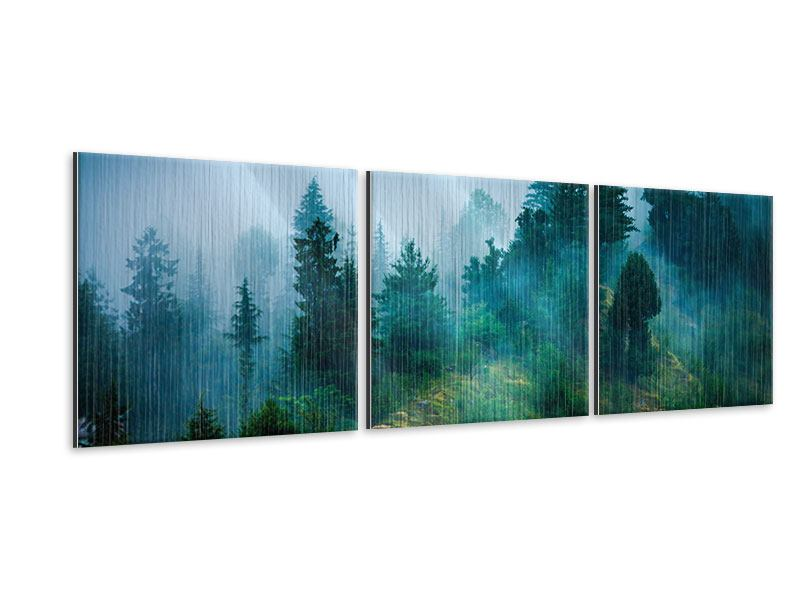 Panorama Metallic-Bild 3-teilig Geheimnisvoller Wald