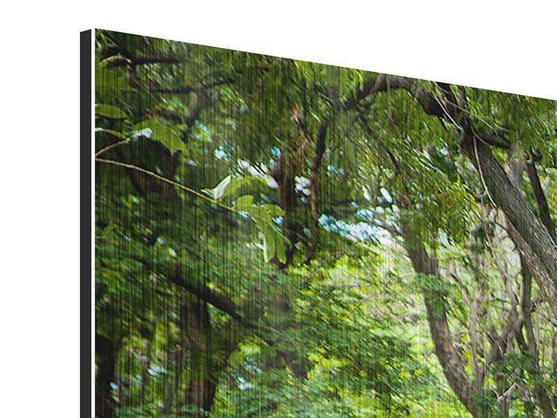 Panorama Metallic-Bild 3-teilig Kirschbaum-Garten