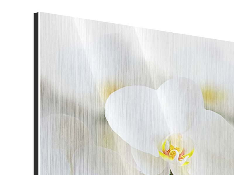 Panorama Metallic-Bild 3-teilig Weisse Orchideen