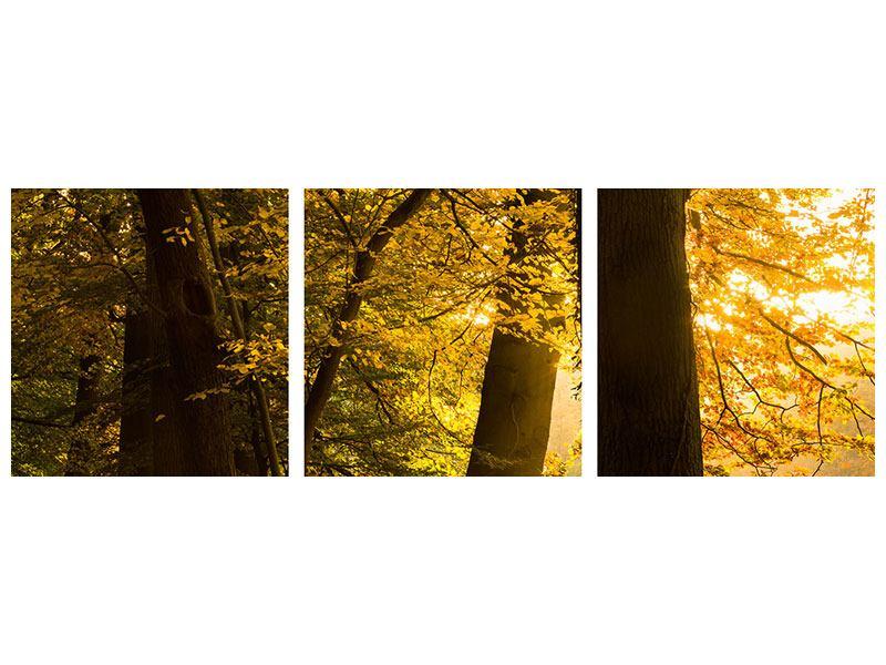 Panorama Metallic-Bild 3-teilig Herbstlaub
