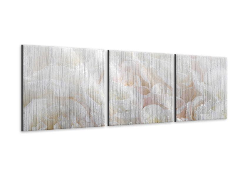 Panorama Metallic-Bild 3-teilig Weisse Rosen im Morgentau