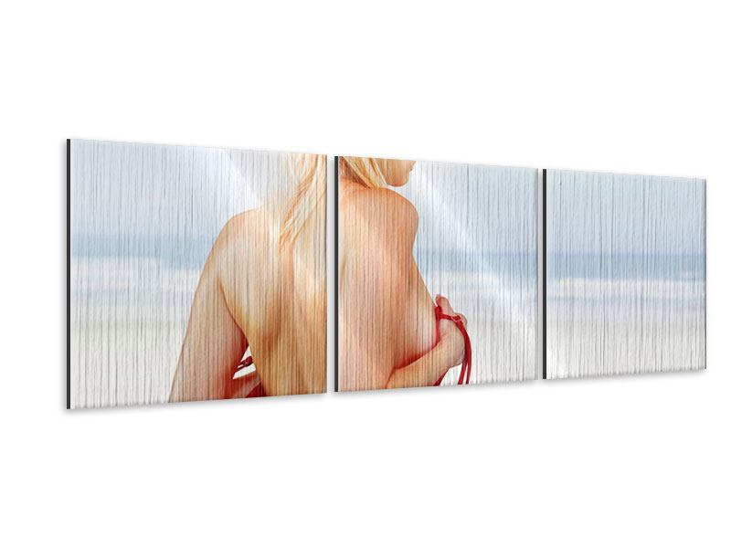 Panorama Metallic-Bild 3-teilig Rücken einer Schönheit