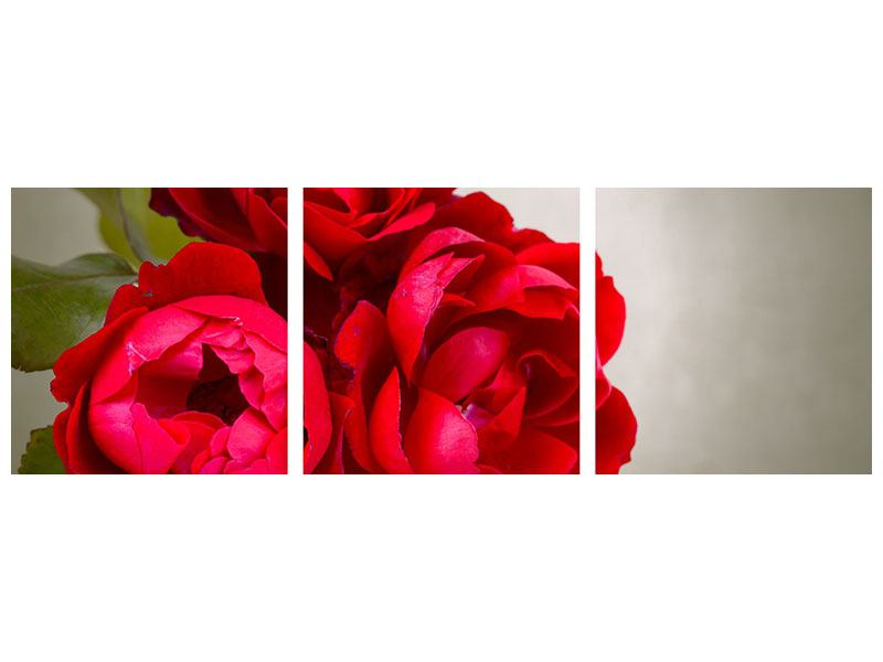 Panorama Metallic-Bild 3-teilig Drei rote Rosen