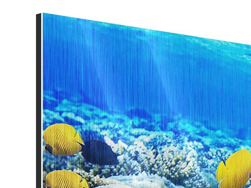 Panorama Metallic-Bild 3-teilig Fischaquarium