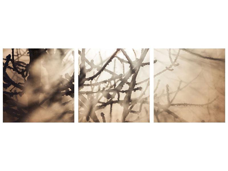 Panorama Metallic-Bild 3-teilig Äste im Schleierlicht