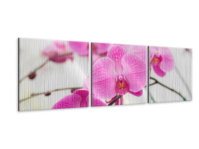 Panorama Metallic-Bild 3-teilig Das Symbol der Orchidee