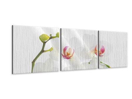 Panorama Metallic-Bild 3-teilig Orchideenliebe