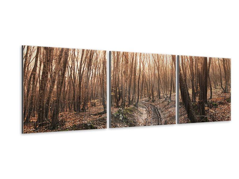 Panorama Metallic-Bild 3-teilig Der kahle Wald