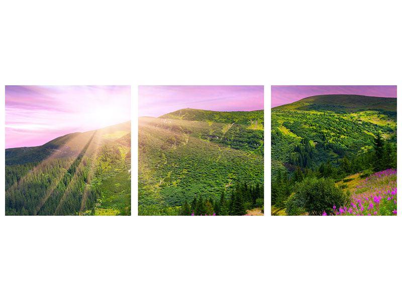 Panorama Metallic-Bild 3-teilig Eine Sommerlandschaft bei Sonnenaufgang
