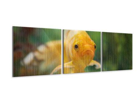 Panorama Metallic-Bild 3-teilig Der Fisch