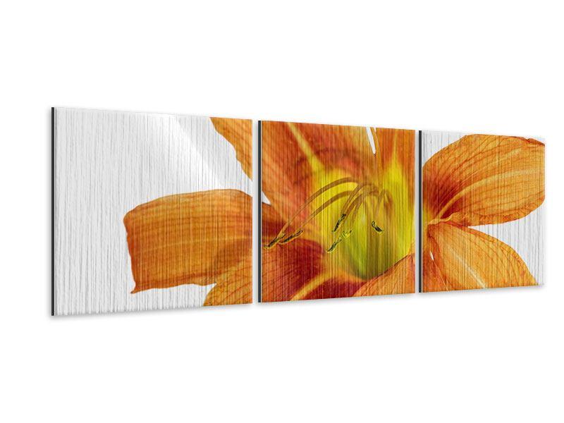 Panorama Metallic-Bild 3-teilig Die Tiger-Lilie