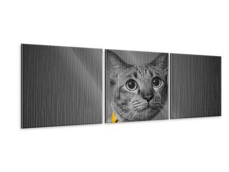 Panorama Metallic-Bild 3-teilig Katzenlady
