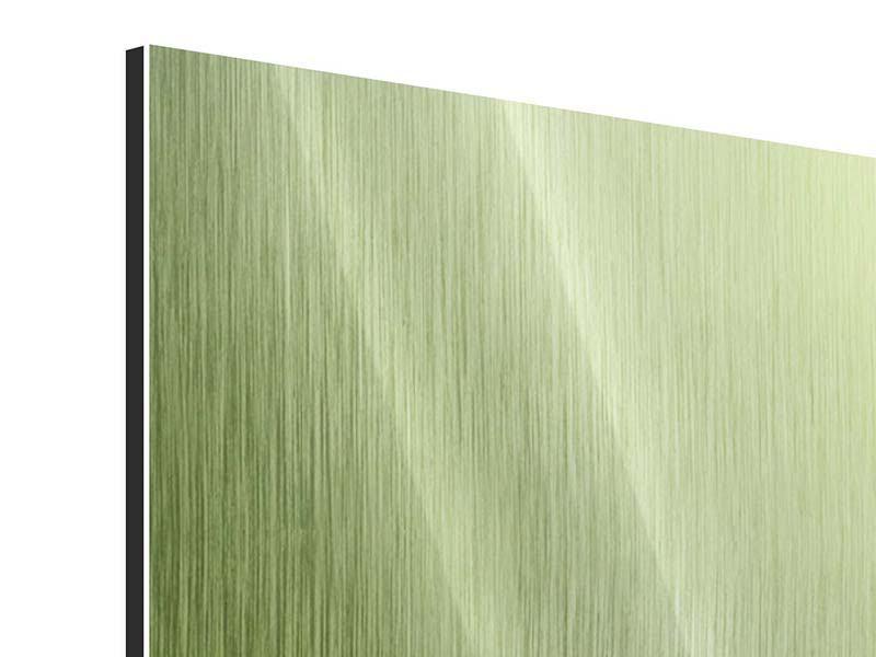 Panorama Metallic-Bild 3-teilig Pusteblume XL im Morgentau