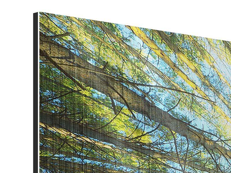 Panorama Metallic-Bild 3-teilig Kiefernwald