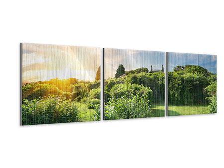 Panorama Metallic-Bild 3-teilig Sonnenaufgang im Park