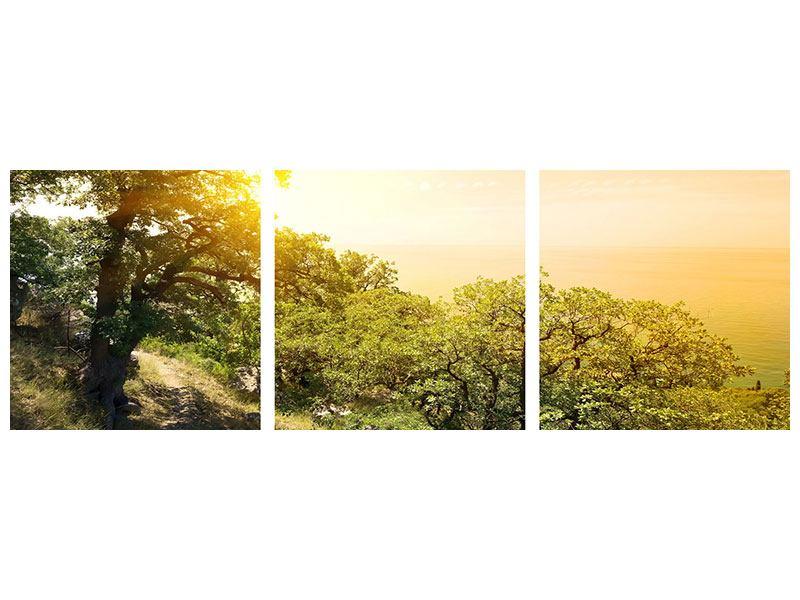 Panorama Metallic-Bild 3-teilig Sonnenuntergang in der Natur