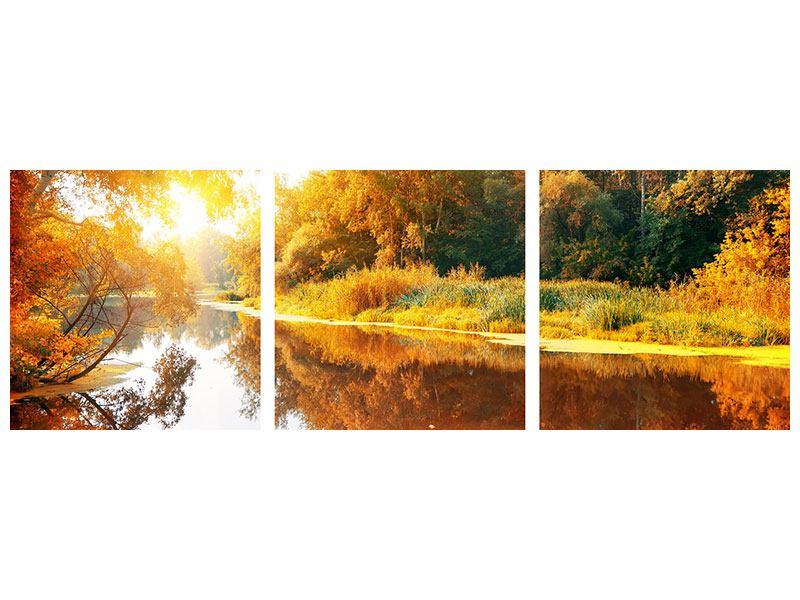 Panorama Metallic-Bild 3-teilig Waldspiegelung im Wasser