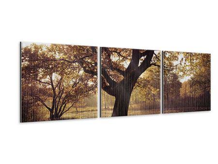 Panorama Metallic-Bild 3-teilig Landschaftspark