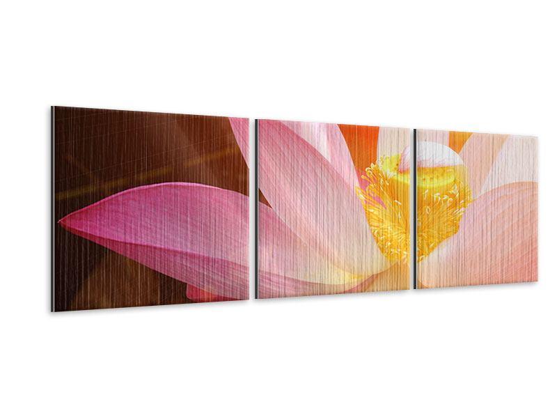 Panorama Metallic-Bild 3-teilig Close Up Lotus