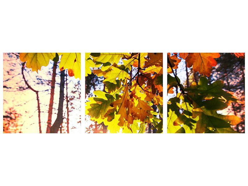 Panorama Metallic-Bild 3-teilig Herbst