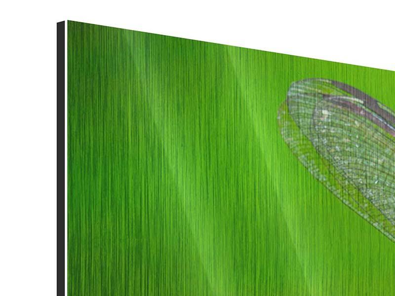 Panorama Metallic-Bild 3-teilig Die Libelle