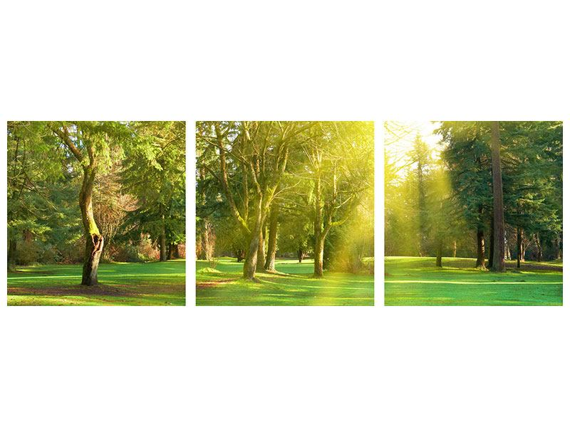 Panorama Metallic-Bild 3-teilig Im Park