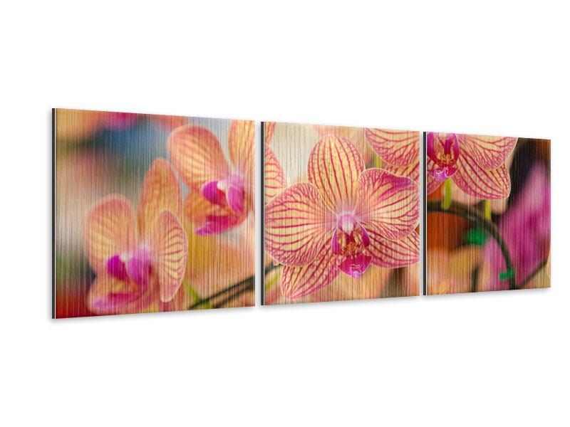 Panorama Metallic-Bild 3-teilig Exotische Orchideen